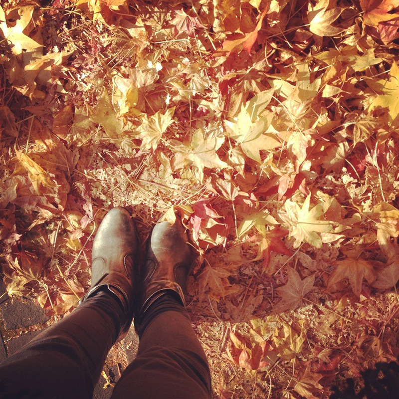 hello-fall-fijn-lijstje